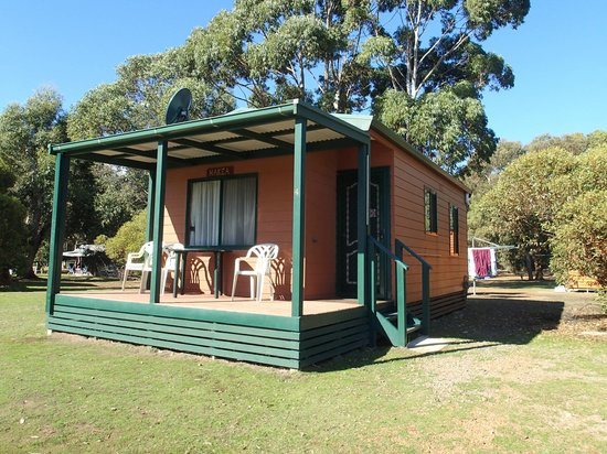 Western KI Caravan Park and Wildlife Reserve: our cabin, hakea