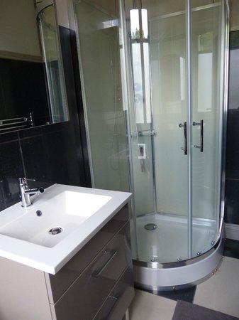 La Belle Epoque : Shower in the en-suite bathroom