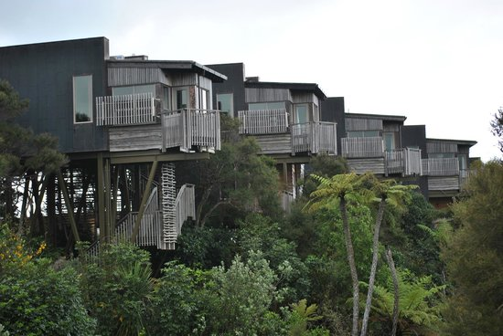 Hapuku Lodge: The Treehouses (closer view)