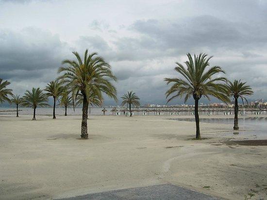 Pinero Hotel Bahia De Palma: Praia