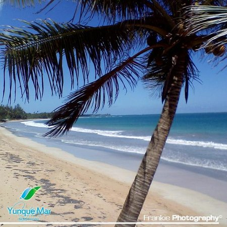 Hotel Yunque Mar: Beaches within walking distance