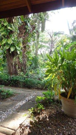 Villa Acacia: jardín