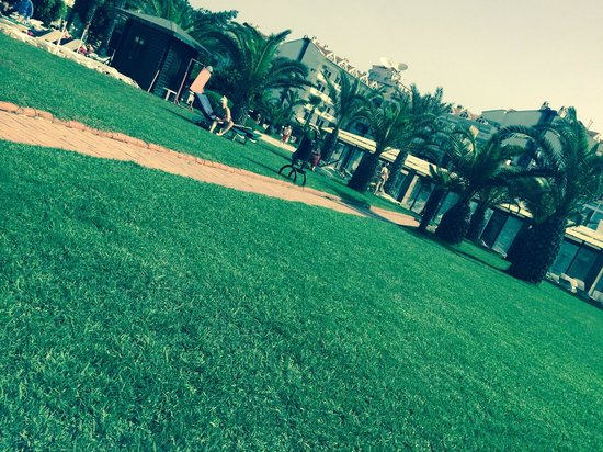 Pineta Park: Grounds