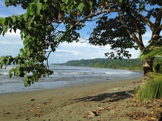 Boca Sombrero: low tide drainers