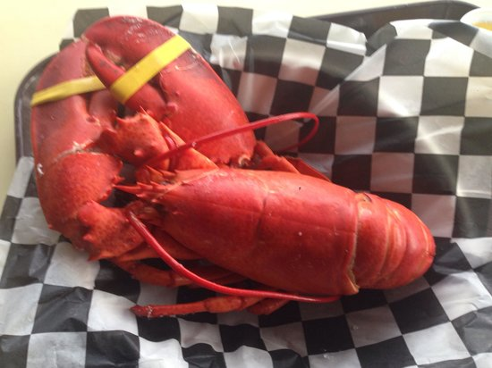 Beal's Lobster Pier: So delicious!