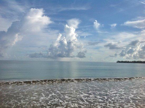 Hotel Yunque Mar: ocean view