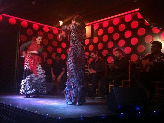 Explore Catalunya : flamenco show