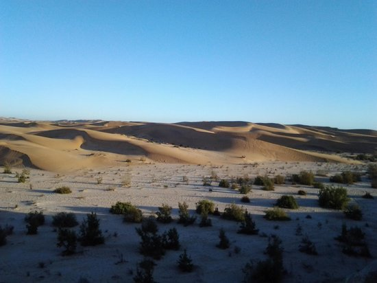 Desert Breeze Lodge: view from the room
