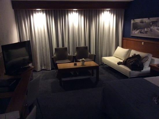 Hotel Den Haag-Wassenaar: seating area