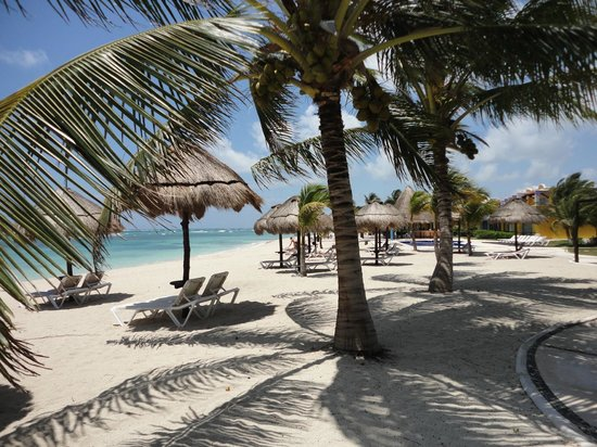 PavoReal Beach Resort Tulum: Camastros y sombrillas