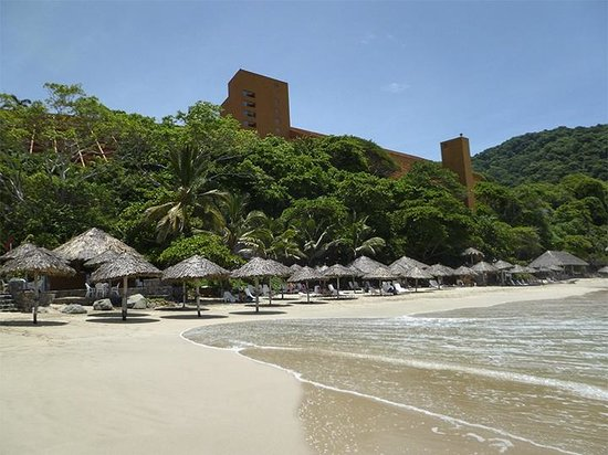 Las Brisas Ixtapa : The hotel sits above a private, crescent shaped beach.