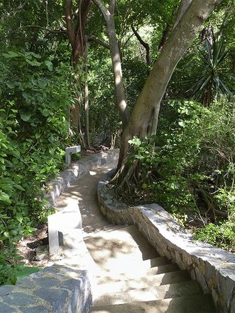 Las Brisas Ixtapa : Stone paths criss cross alog the hillside taking you to the pools and beach.