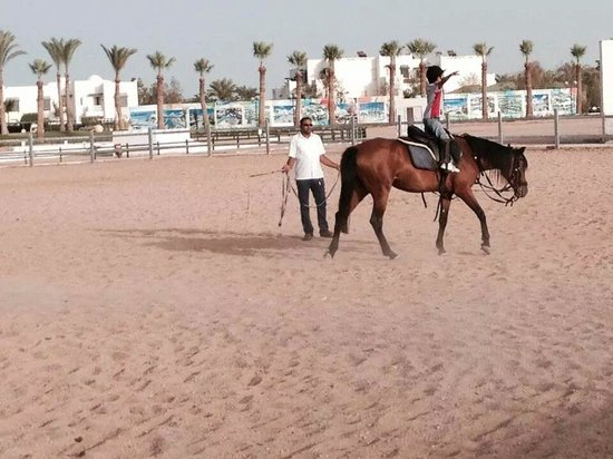 Mercure Hurghada Hotel: Riding lesson :)