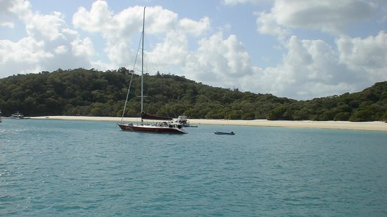 yachts anchored off of Whitehaven Beach