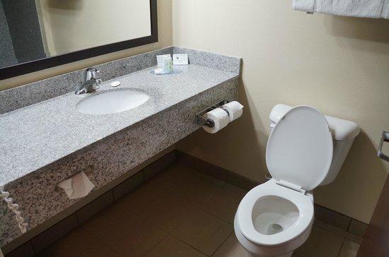 Comfort Inn & Suites: Suíte