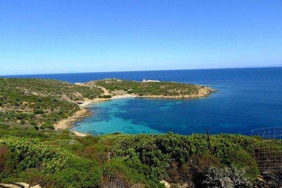 Shardana - Escursioni nel Parco Nazionale dell'Asinara