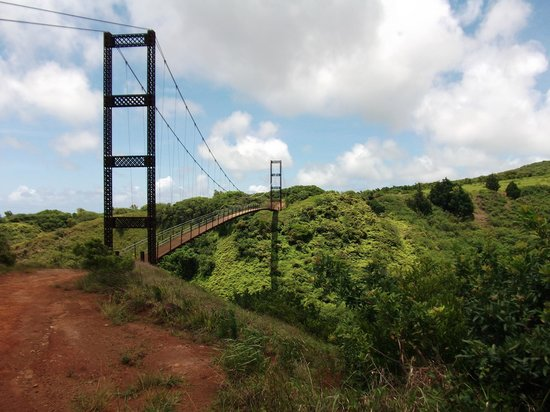 Kapalua Ziplines : Bridge To First Line