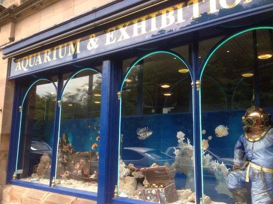Matlock Bath Aquarium & Exhibitions: Pretty frontage
