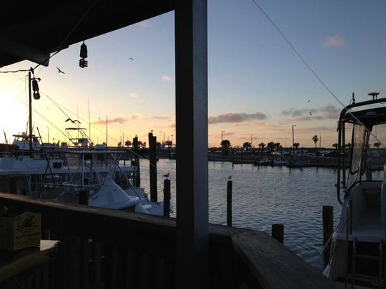 Fins Grill and Icehouse : The view from our table