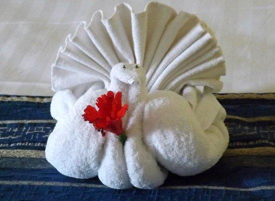 Viva Wyndham Azteca : Lusely's towel sculpture
