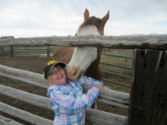 Yellowstone Horses - Eagle Ridge Ranch: Wrigley getting horse kisses.
