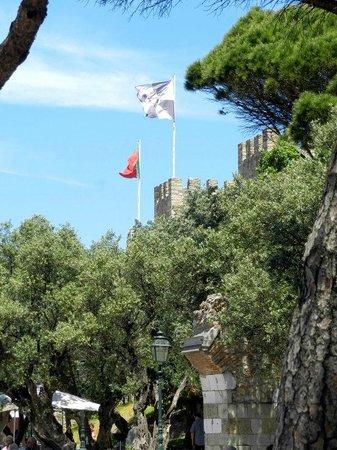 Castelo de Sao Jorge : Linda Vista
