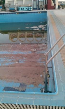 "Bab Al Bahr Hotel: ""swimming"" pool"