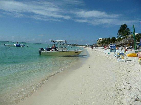 Palm Beach: Muchas actividades