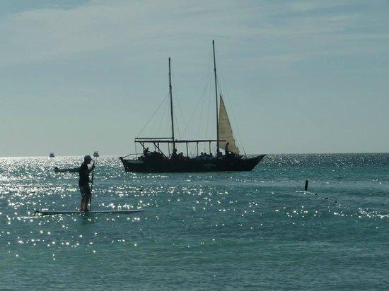 Palm Beach: Siempre es llanita nada profunda