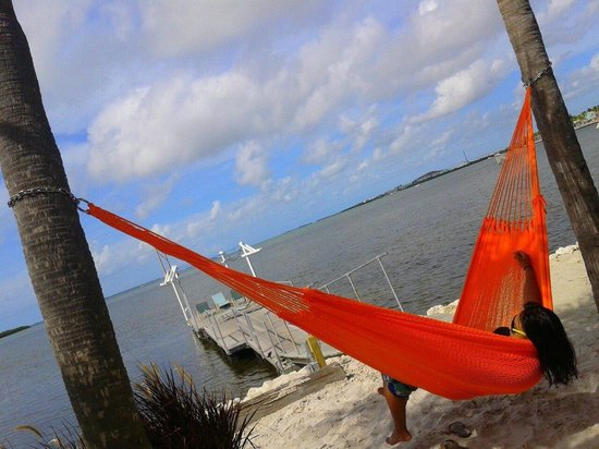 Ibis Bay Beach Resort: Hammock outside our room