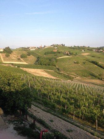 Agriturismo Vecchio Torchio : Panorama dal piazzale