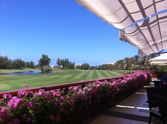 Golf Las Américas: view from the club house with my beer