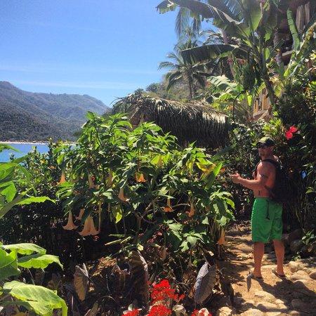 Casa Pericos: Visiting the neighbors