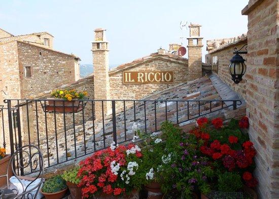 Meuble il Riccio: Il Riccio from community top patio balcony