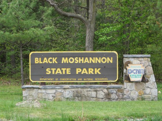Philipsburg (PA) United States  city pictures gallery : ... from the 1930ies Picture of Black Moshannon State Park, Philipsburg