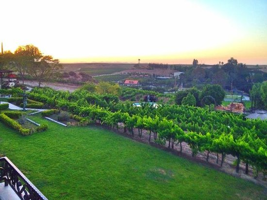 Inn at Churon Winery: View of of Chardonnay Suite