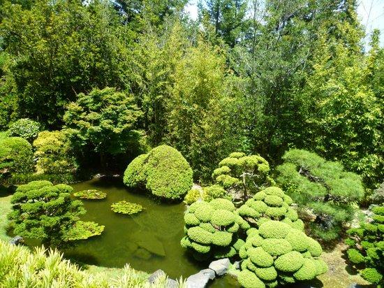 Golden Gate National Recreation Area: Japanese Teahouse garden