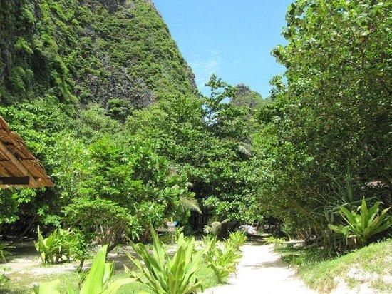 Picture of Bamboo Island, Ko Phi Phi Don - TripAdvisor