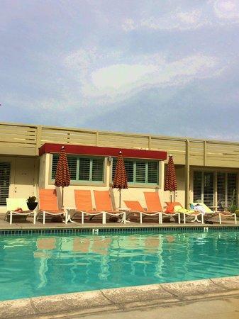 Del Marcos Hotel: Pool