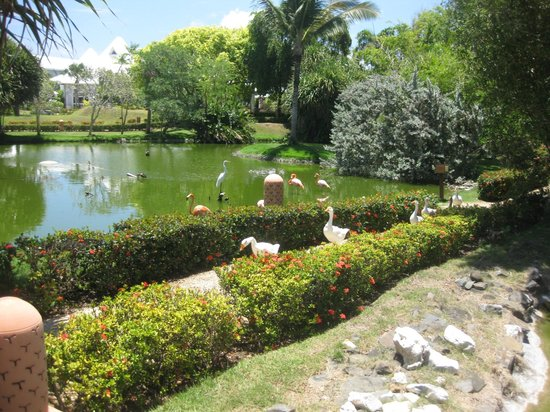 Excellence Punta Cana: jogging and walking trails on the resort