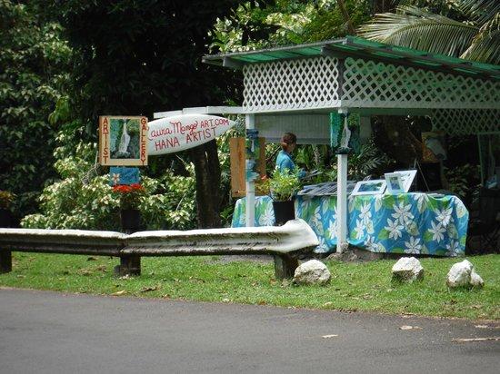 Laura Mango Art Gallery: Laura Mango Art roadside gallery on the Road to Hana
