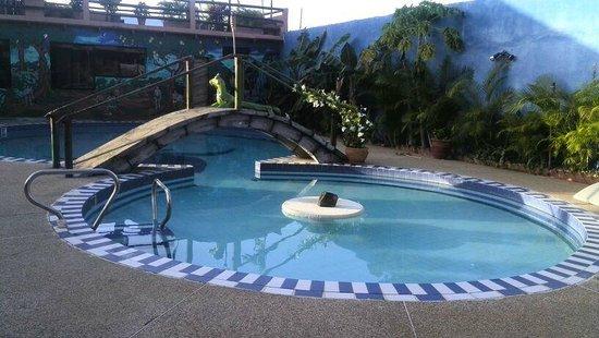 Posada Guaicora: La piscina