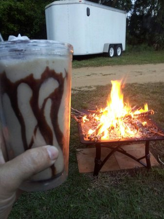 Ocala Forest Campground: Chillin
