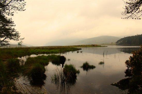 Glenveagh Castle : Passeggiata x arrivare al castello