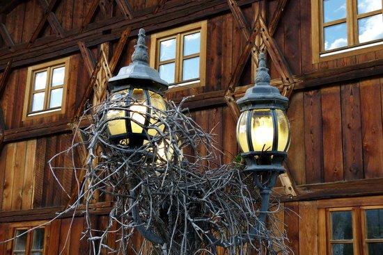 The Old Bauernhaus 사진