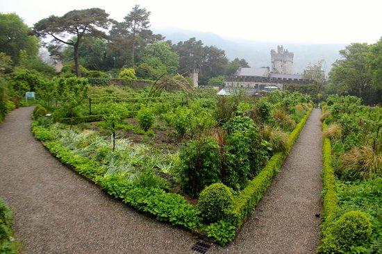Glenveagh Castle : giardini del castello
