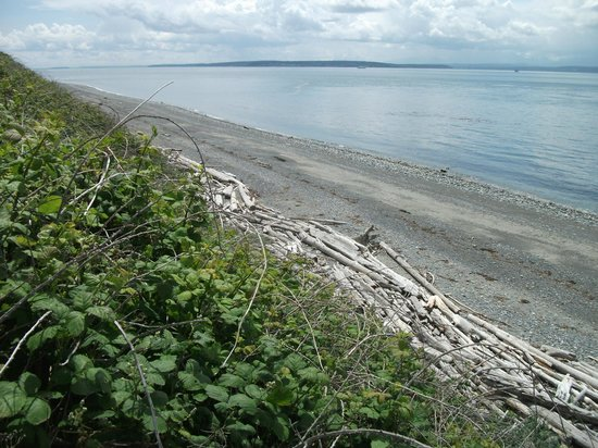 Ebey's Landing National Historical Reserve: The beach