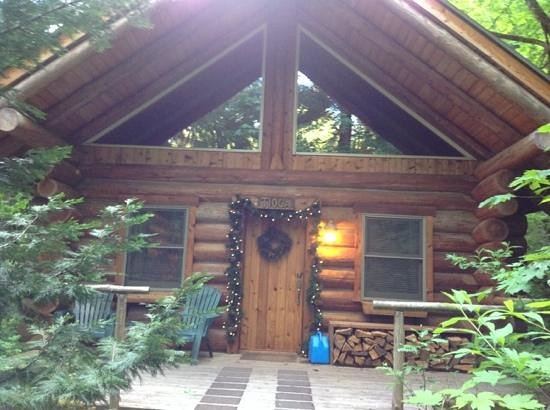 Wellspring: Little cabin in the woods!