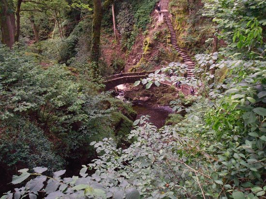 Aira Force: Bridge and viewing platform
