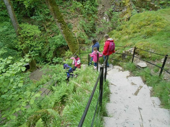 Aira Force: A few steps